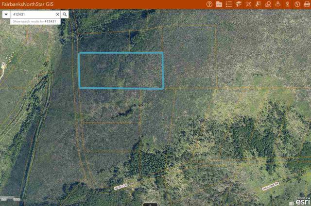 47 MILE Steese Highway, Fairbanks, AK 99712 (MLS #137745) :: Madden Real Estate