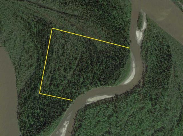 NHN Kantishna River, Nenana, AK 99760 (MLS #137914) :: Madden Real Estate