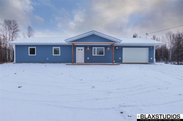 2039 Aaron Avenue, North Pole, AK 99705 (MLS #138395) :: Madden Real Estate