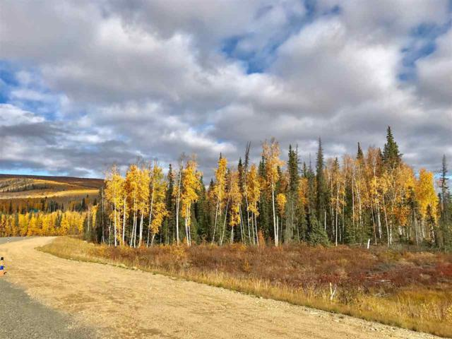 LOT 14 Manley Airport, Manley, AK 99756 (MLS #138535) :: Madden Real Estate