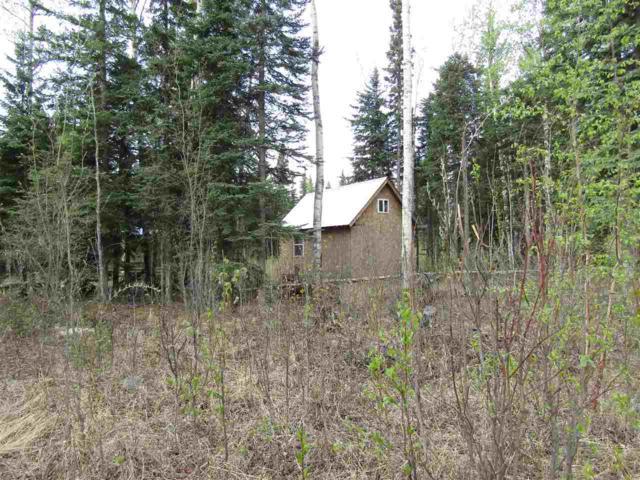 TR C-3 Tanana Loop Extension, Delta Junction, AK 99737 (MLS #138621) :: Madden Real Estate