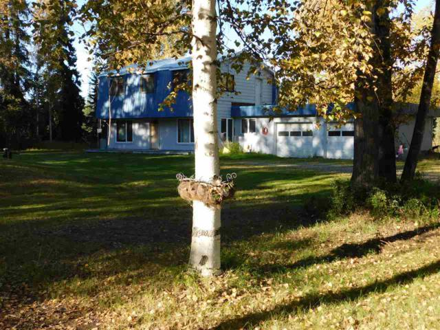 1234 Candle Lite Loop, North Pole, AK 99705 (MLS #139010) :: Madden Real Estate