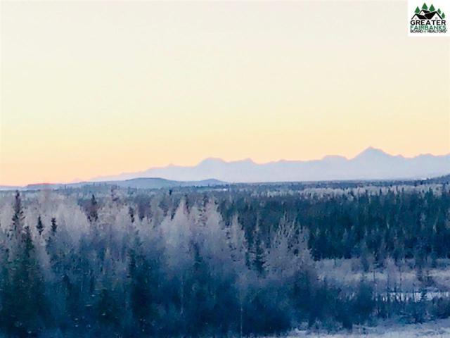 NHA-R-1 Chena Hot Springs Road, Fairbanks, AK 99712 (MLS #139081) :: Madden Real Estate