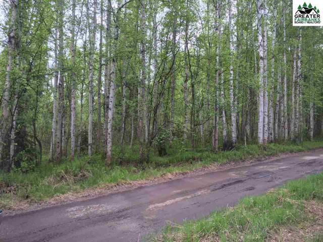 NHN Carl Crosman Way, North Pole, AK 99705 (MLS #139135) :: RE/MAX Associates of Fairbanks