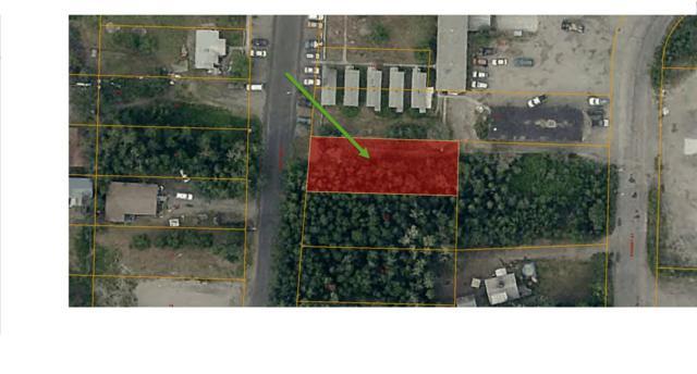 0 Mary Ann Street, Fairbanks, AK 99701 (MLS #139470) :: Madden Real Estate