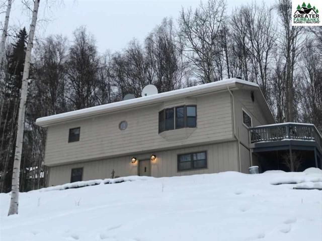 270 Hawk Road, Fairbanks, AK 99712 (MLS #139600) :: Madden Real Estate