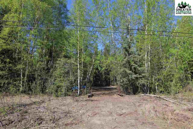 NHN Hoselton Road, Fairbanks, AK 99709 (MLS #139655) :: Madden Real Estate