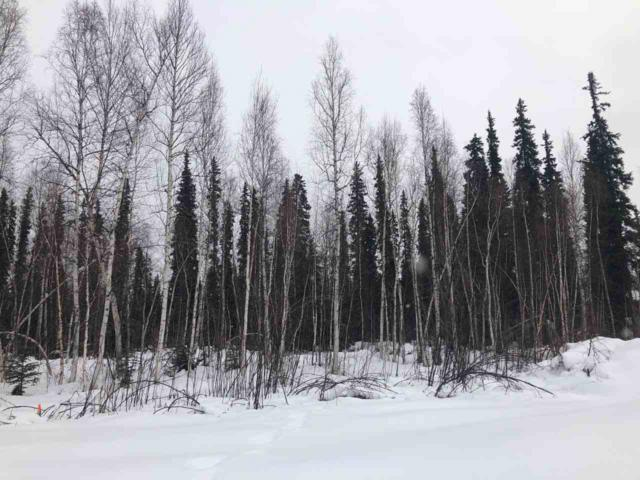 LOT 26 Christine Drive, North Pole, AK 99705 (MLS #139895) :: Powered By Lymburner Realty