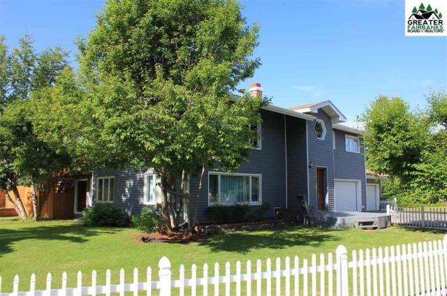 3043 Riverview Drive, Fairbanks, AK 99709 (MLS #140100) :: Madden Real Estate