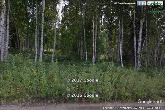 L3B2 NHN Teresa Turnaround/Mcgrath, Fairbanks, AK 99701 (MLS #140386) :: RE/MAX Associates of Fairbanks