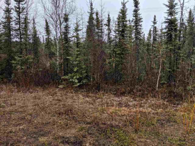 6080 Richardson Highway, Salcha, AK 99714 (MLS #140619) :: Madden Real Estate