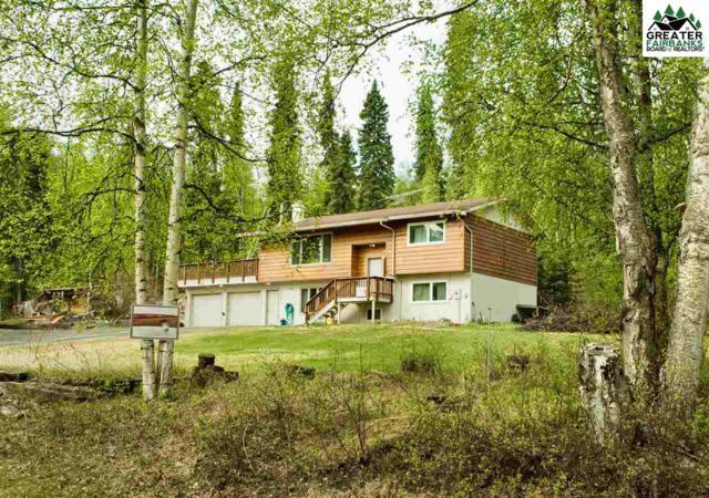 3301 Helen Place, Fairbanks, AK 99709 (MLS #140719) :: Madden Real Estate