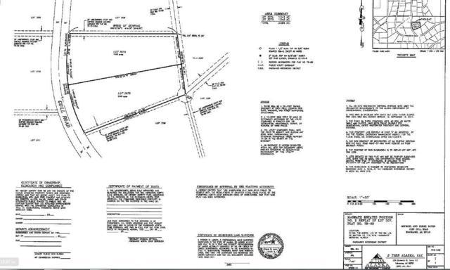 1140 Gull Road, Fairbanks, AK 99712 (MLS #140864) :: Powered By Lymburner Realty