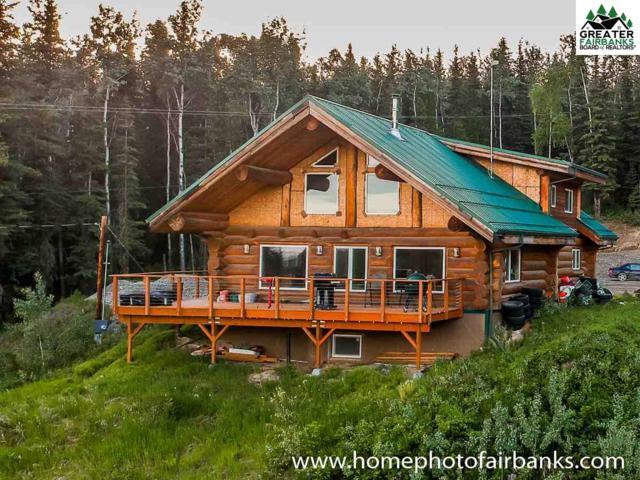 3655 Krynn Court, Fairbanks, AK 99712 (MLS #140881) :: Madden Real Estate