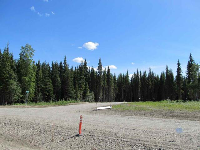 NHN Glory Court, North Pole, AK 99705 (MLS #140952) :: Madden Real Estate