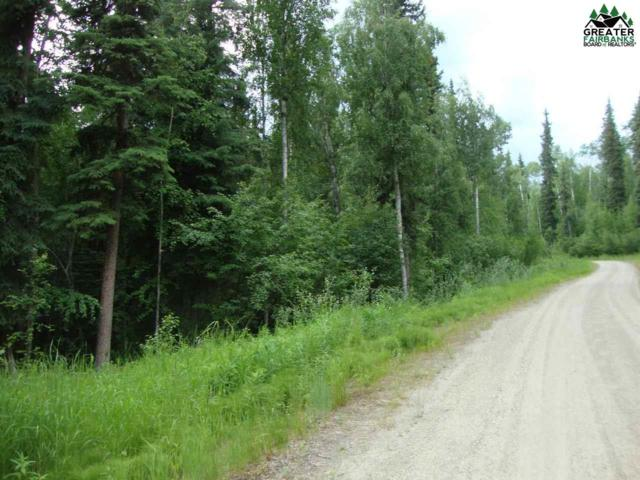 NHN Buffalo Lane, Fairbanks, AK 99712 (MLS #140981) :: Powered By Lymburner Realty