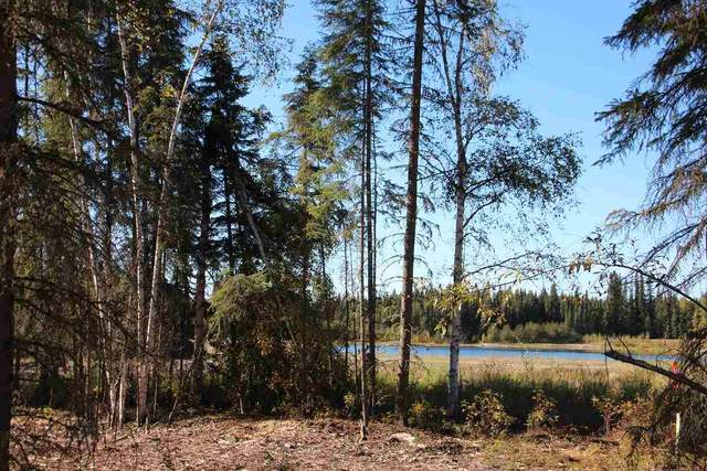 NHN Glory Court, North Pole, AK 99705 (MLS #141005) :: Madden Real Estate