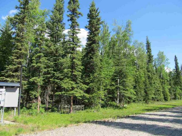 NHN Clear Water Court, North Pole, AK 99705 (MLS #141009) :: Madden Real Estate