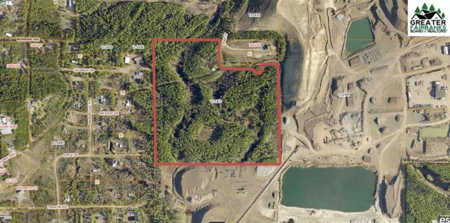 911 Star Court, North Pole, AK 99705 (MLS #141685) :: Madden Real Estate