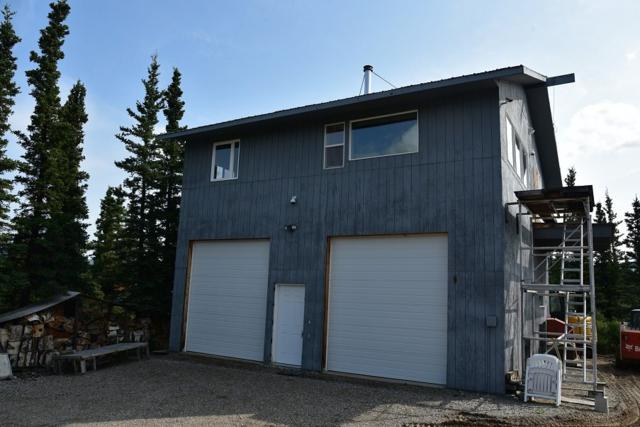 L11B06 Bornite Place, Healy, AK 99743 (MLS #141722) :: Madden Real Estate