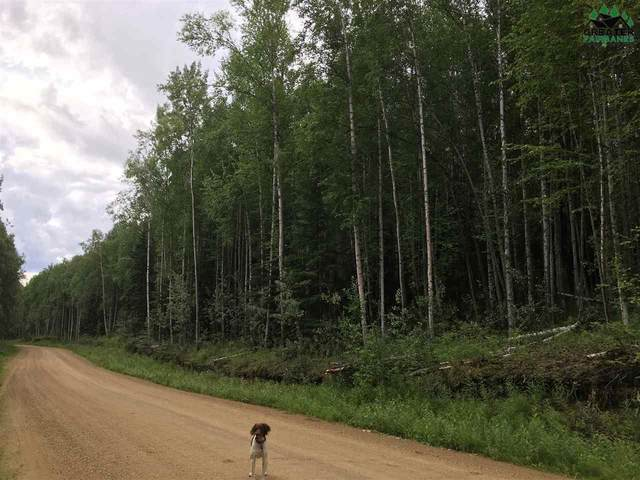 1617 Sunlight Drive, Fairbanks, AK 99709 (MLS #142141) :: RE/MAX Associates of Fairbanks