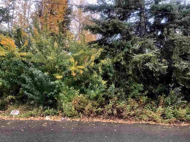 NHN Twenty-First Avenue, Fairbanks, AK 99701 (MLS #142172) :: Madden Real Estate