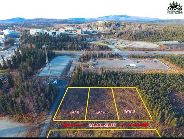 nhn Palmer Street, Fairbanks, AK 99709 (MLS #142546) :: Madden Real Estate