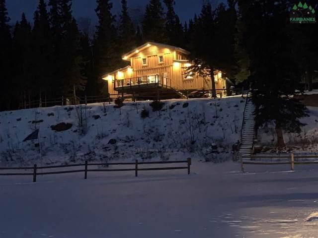 Lot 19 Quartz Lake, Delta Junction, AK 99737 (MLS #142635) :: Madden Real Estate