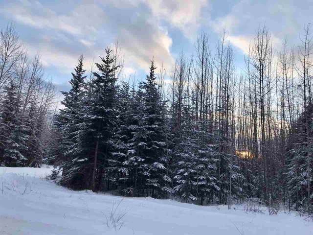 3489 Old Richardson Highway, Salcha, AK 99705 (MLS #142950) :: Madden Real Estate