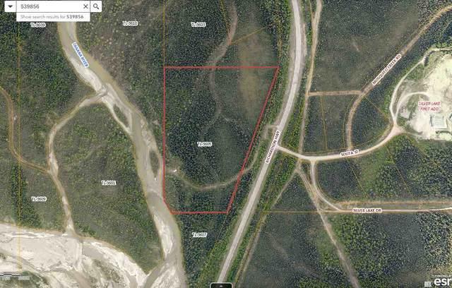 NHN Richardson Highway, Salcha, AK 99756 (MLS #143027) :: Powered By Lymburner Realty
