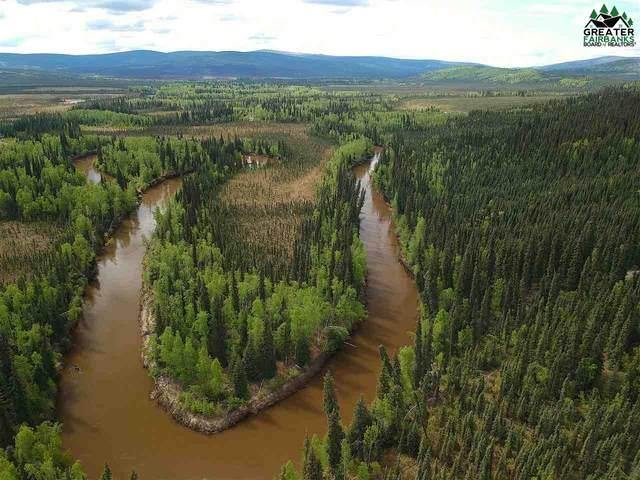 NHN Chatanika River, Fairbanks, AK 99712 (MLS #143131) :: Powered By Lymburner Realty