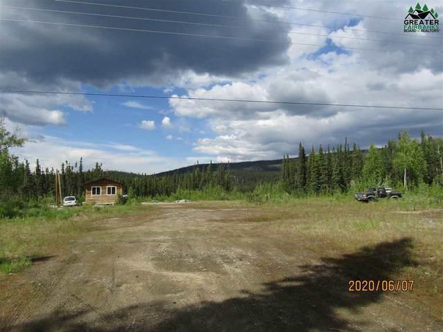 12900 Richardson Highway, Salcha, AK 99714 (MLS #144053) :: Powered By Lymburner Realty
