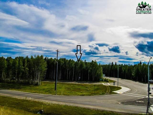 S Saint Nicholas Drive, North Pole, AK 99705 (MLS #145900) :: Powered By Lymburner Realty