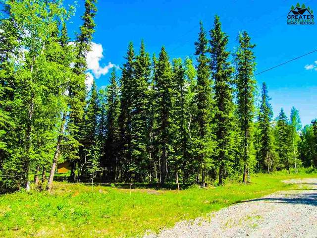 781 Clear Water Court, North Pole, AK 99705 (MLS #145902) :: RE/MAX Associates of Fairbanks