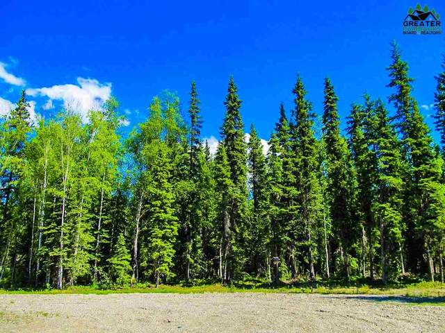 787 Clear Water Court, North Pole, AK 99705 (MLS #145903) :: RE/MAX Associates of Fairbanks