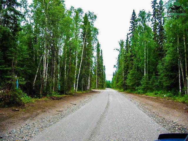 Tract D S Blanket Boulevard, North Pole, AK 99705 (MLS #145906) :: RE/MAX Associates of Fairbanks