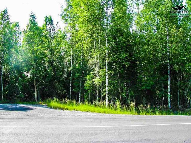 2881 Buzby Road, North Pole, AK 99705 (MLS #145910) :: Powered By Lymburner Realty