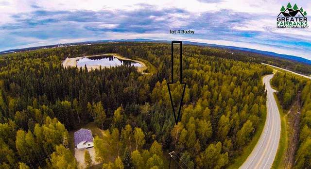 2875 Buzby Road, North Pole, AK 99705 (MLS #145911) :: Powered By Lymburner Realty