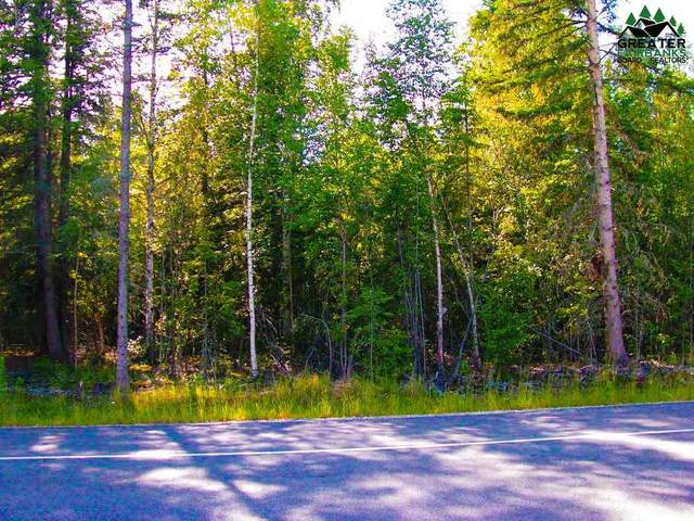 2859 Buzby Road, North Pole, AK 99705 (MLS #145912) :: Powered By Lymburner Realty