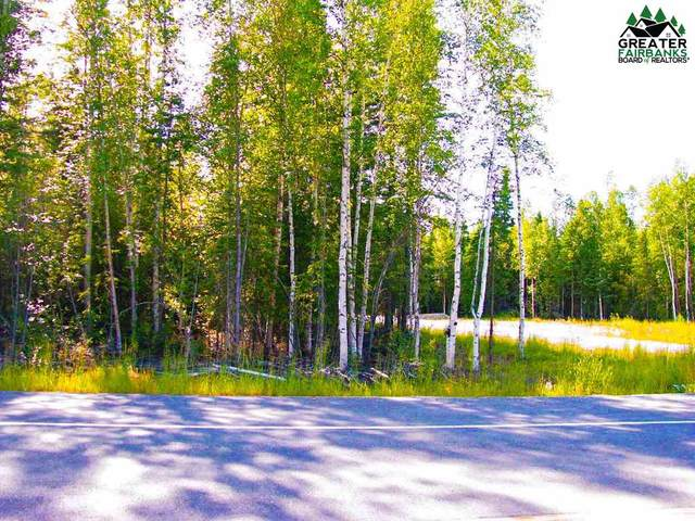 2845 Buzby Road, North Pole, AK 99705 (MLS #145913) :: RE/MAX Associates of Fairbanks