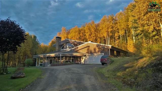 1195 Powellite Drive, Fairbanks, AK 99712 (MLS #146499) :: RE/MAX Associates of Fairbanks