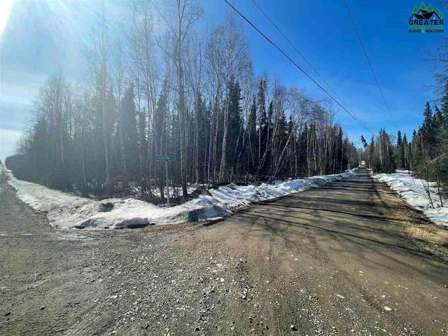 NHN Herning Road, Fairbanks, AK 99712 (MLS #146898) :: RE/MAX Associates of Fairbanks