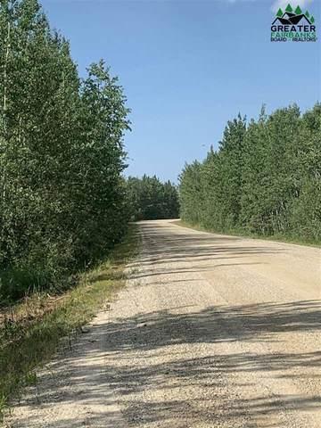 Tr 62 Barley Way, Delta Junction, AK 99737 (MLS #147801) :: RE/MAX Associates of Fairbanks
