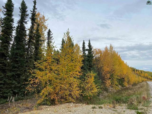 NHN Hibiscus Loop, Fairbanks, AK 99709 (MLS #148349) :: RE/MAX Associates of Fairbanks