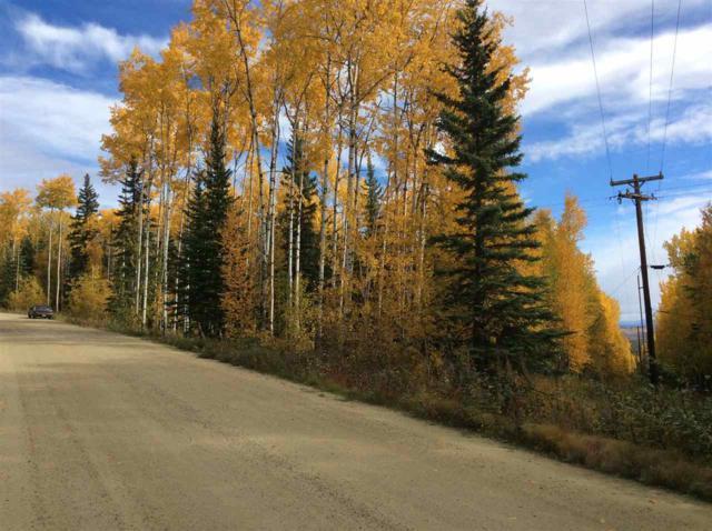 nhn Kelsey Park Road, Fairbanks, AK 99712 (MLS #126684) :: Madden Real Estate