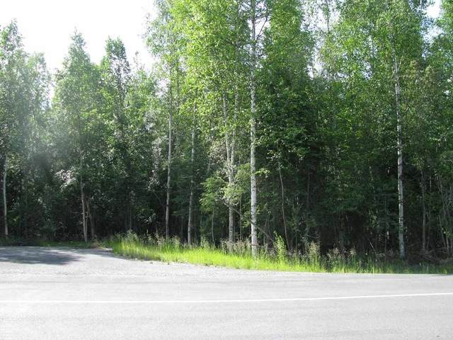 2881 Buzby Road, North Pole, AK 99705 (MLS #133117) :: Madden Real Estate