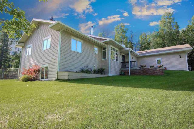 1105 Tyrol Street, Fairbanks, AK 99712 (MLS #134366) :: Madden Real Estate