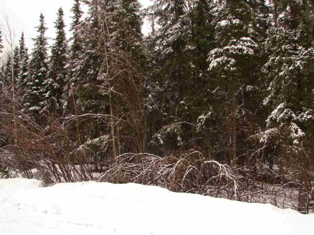 NHN Manchester Loop, Fairbanks, AK 99709 (MLS #137108) :: Madden Real Estate