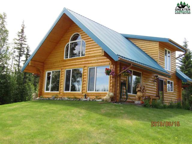 7080 Spring Creek Road, Delta Junction, AK 99737 (MLS #138023) :: Powered By Lymburner Realty