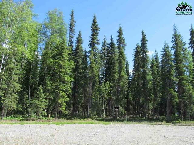 787 Clear Water Court, North Pole, AK 99705 (MLS #141011) :: RE/MAX Associates of Fairbanks